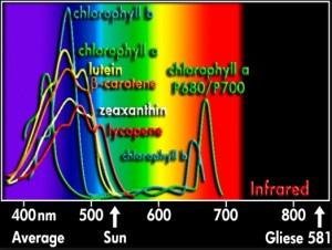 9 Grafico colori